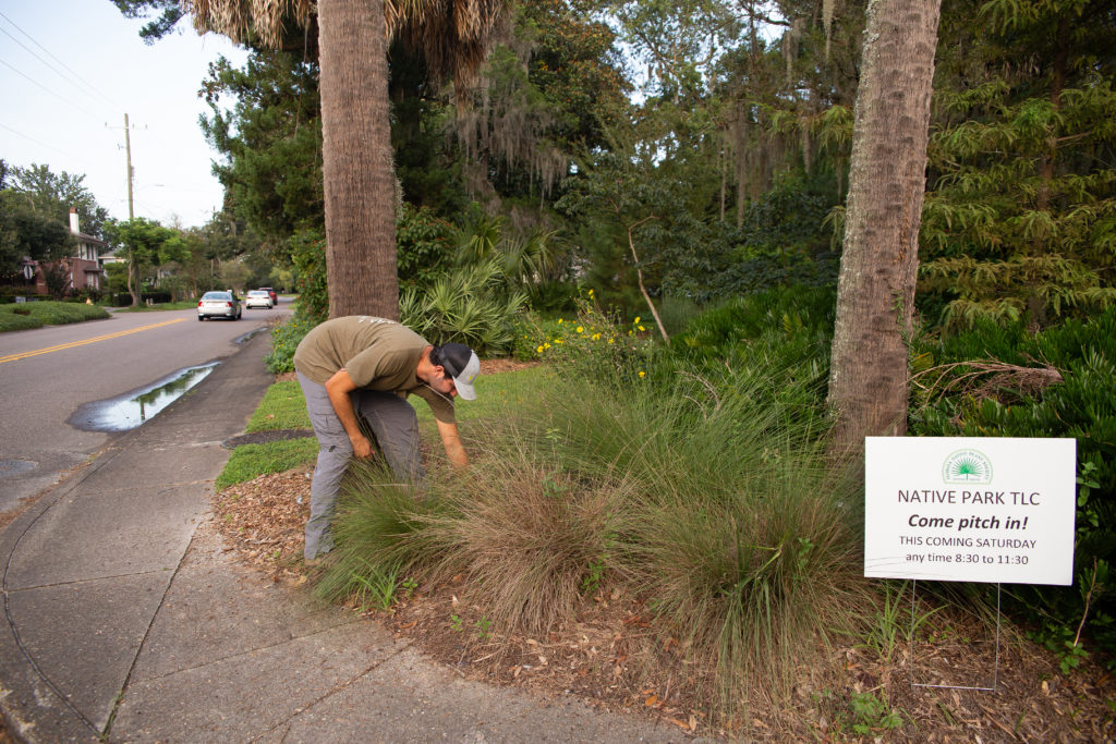 Nick Freeman at work, pulling weeds